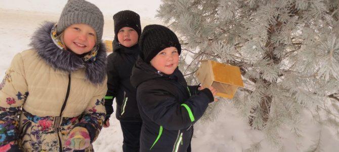 Помощь птицам зимой от объединения «Конструирование технических объектов»